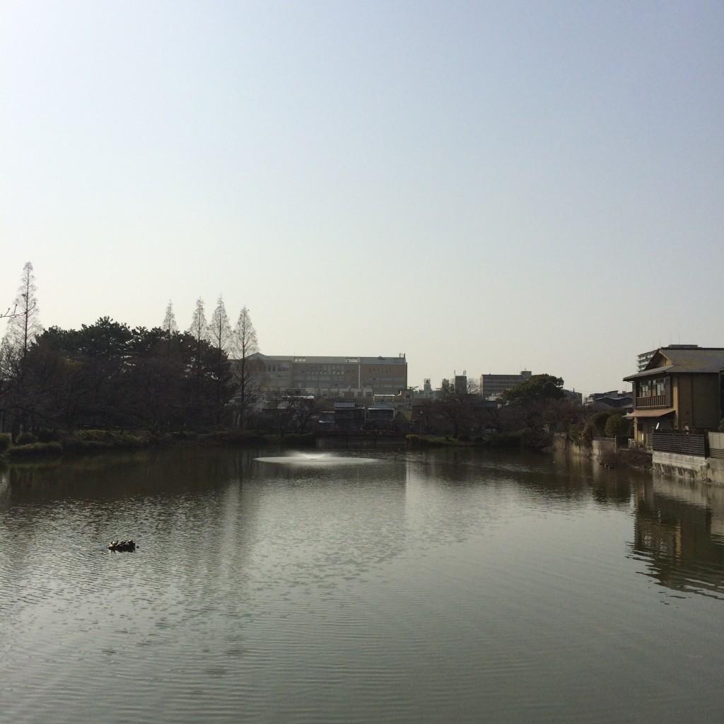 2015年3月21日(土)15時頃の桃が池