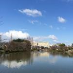 3/25桃が池