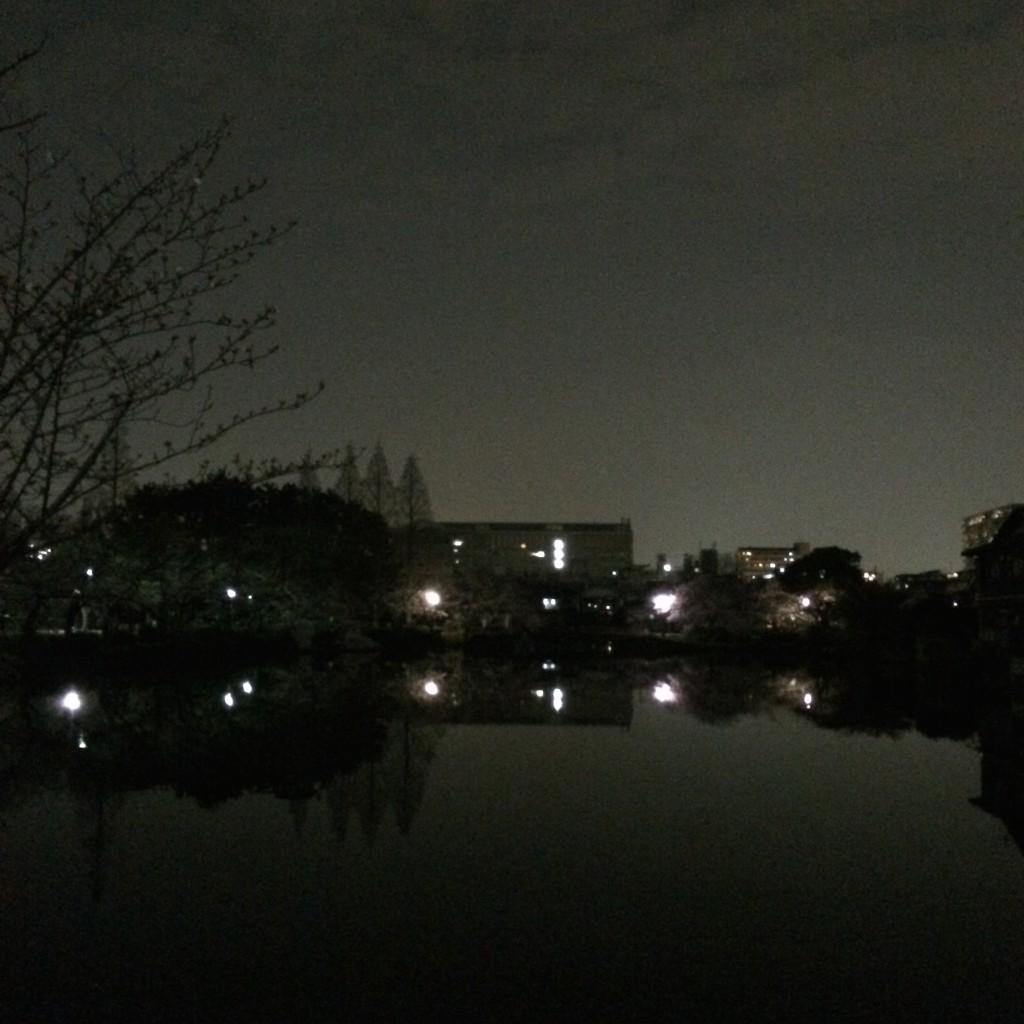 2015年3月31日(火)の桃が池