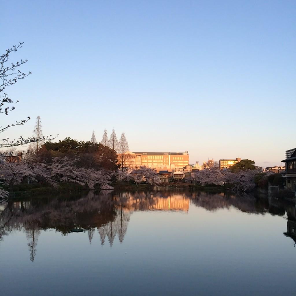 2015年4月2日(木)朝6時前の桃が池