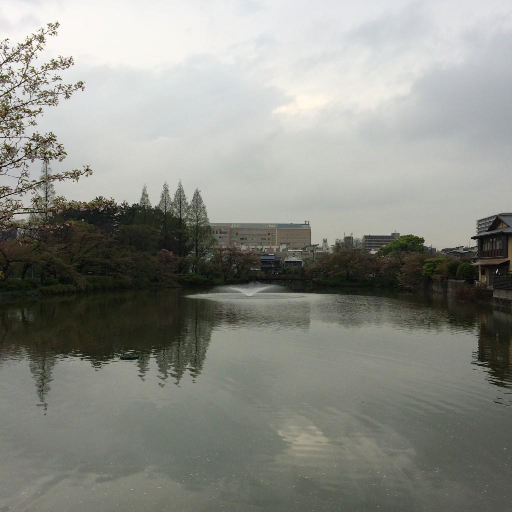 2015年4月14日(火)の桃が池