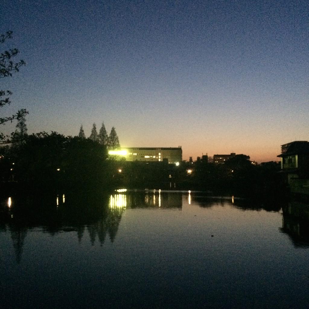 2015年4月17日(金)夕方の桃が池