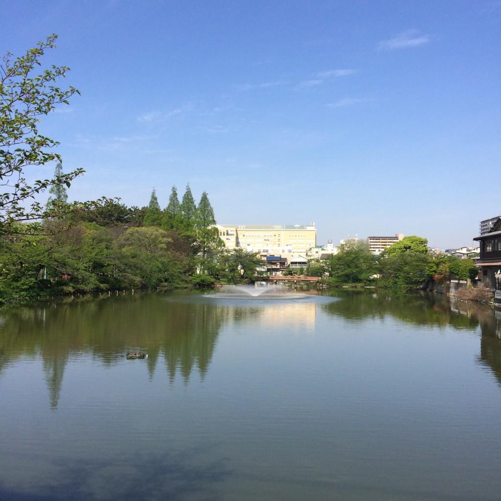 2015年4月22日(水)朝9時頃の桃ヶ池