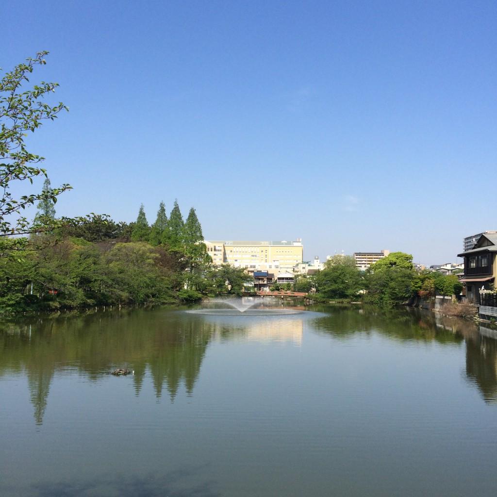 2015年4月23日(木)朝9時頃の桃ヶ池