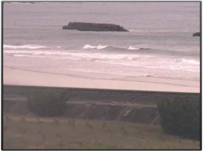 2015年4月8日(水)昼前の伊勢国府の浜