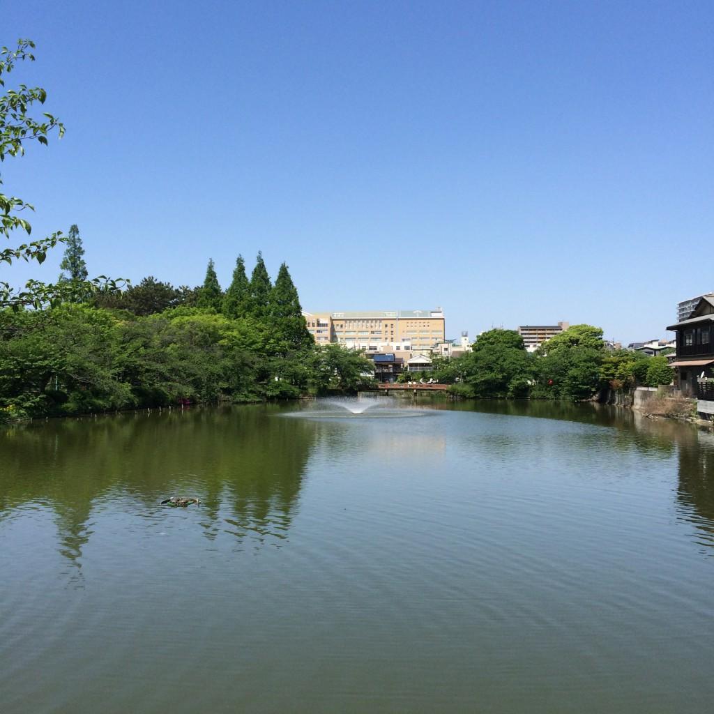 2015年5月5日(火)朝10時頃の桃が池