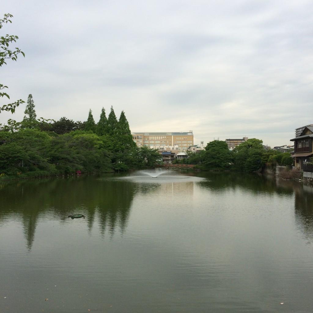 2015年5月7日(木)朝8時頃の桃が池