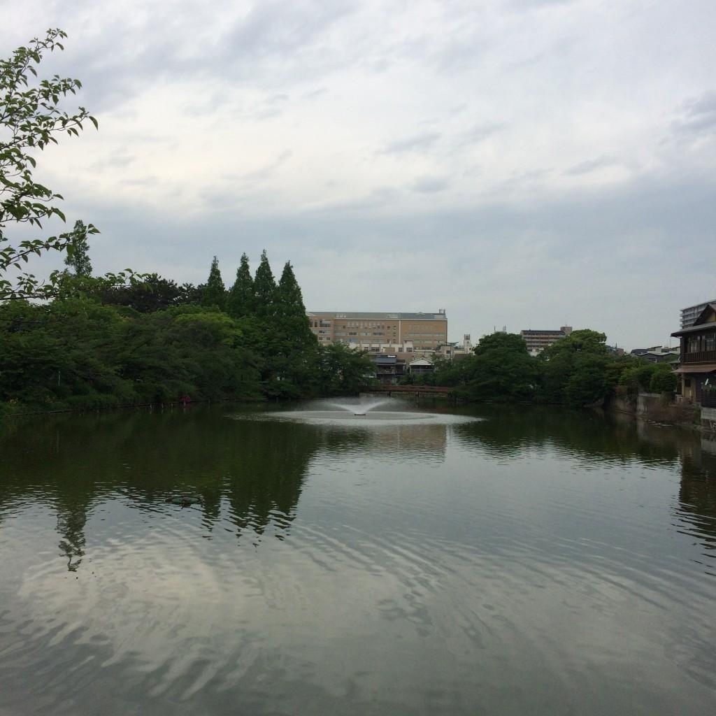 2015年5月9日(土)朝9時過ぎの桃が池