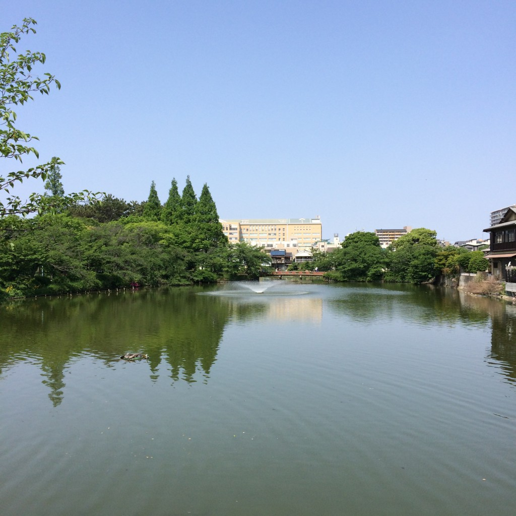 2015年5月10日(日)朝10時頃の桃が池