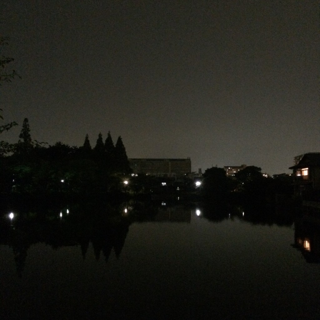 2015年5月15日(金)夜9時頃の桃が池