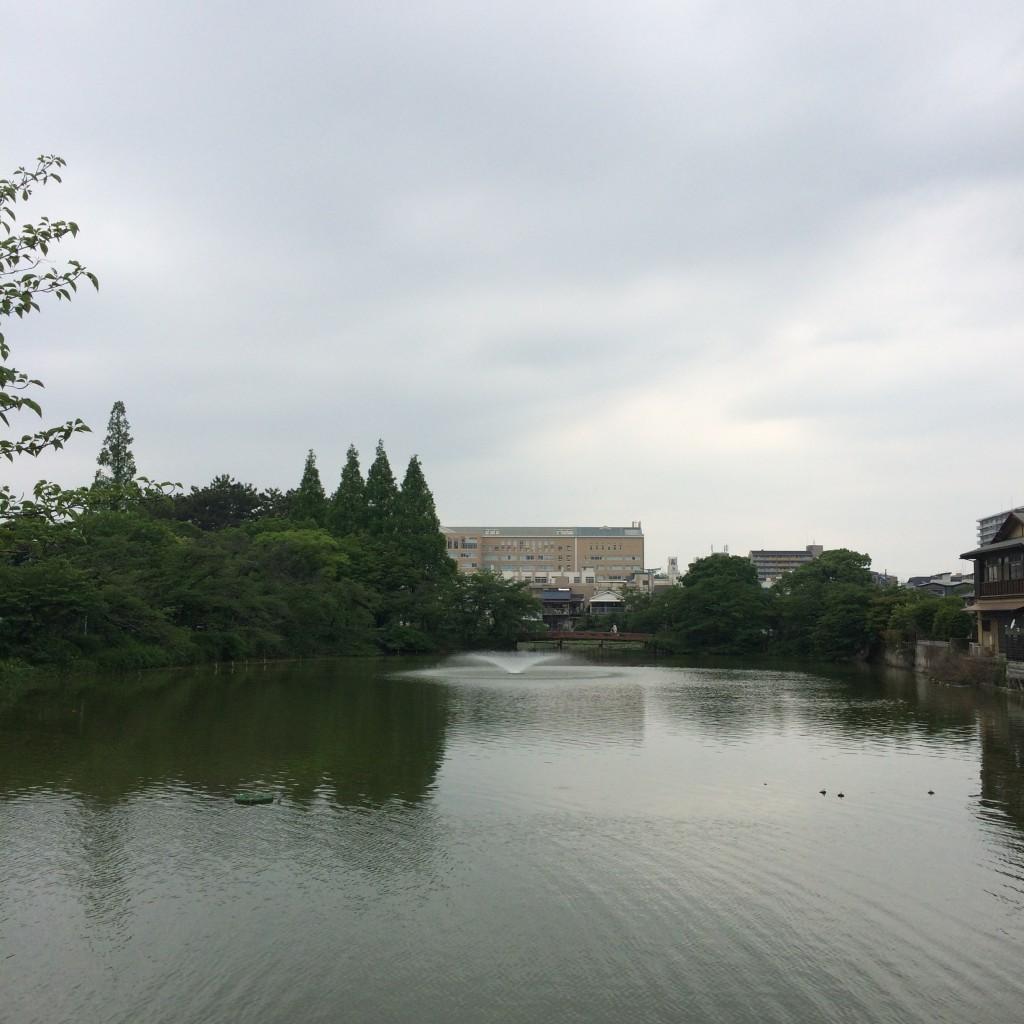 2015年5月16日(土)昼3時頃の桃が池