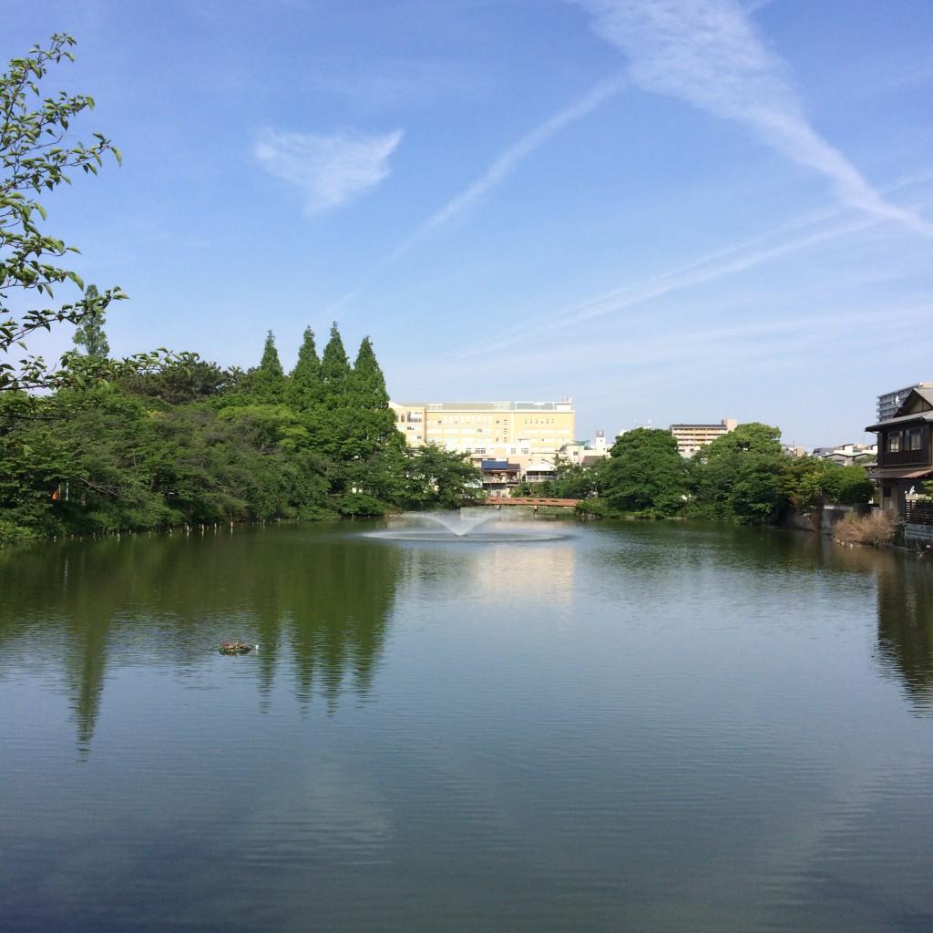 2015年5月17日(日)朝8時過ぎの桃が池