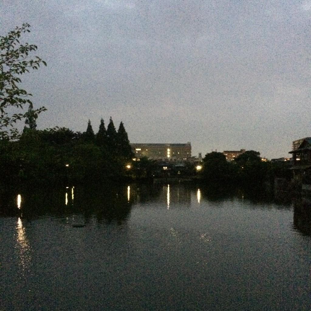 2015年5月20日(水)夜7時頃の桃が池