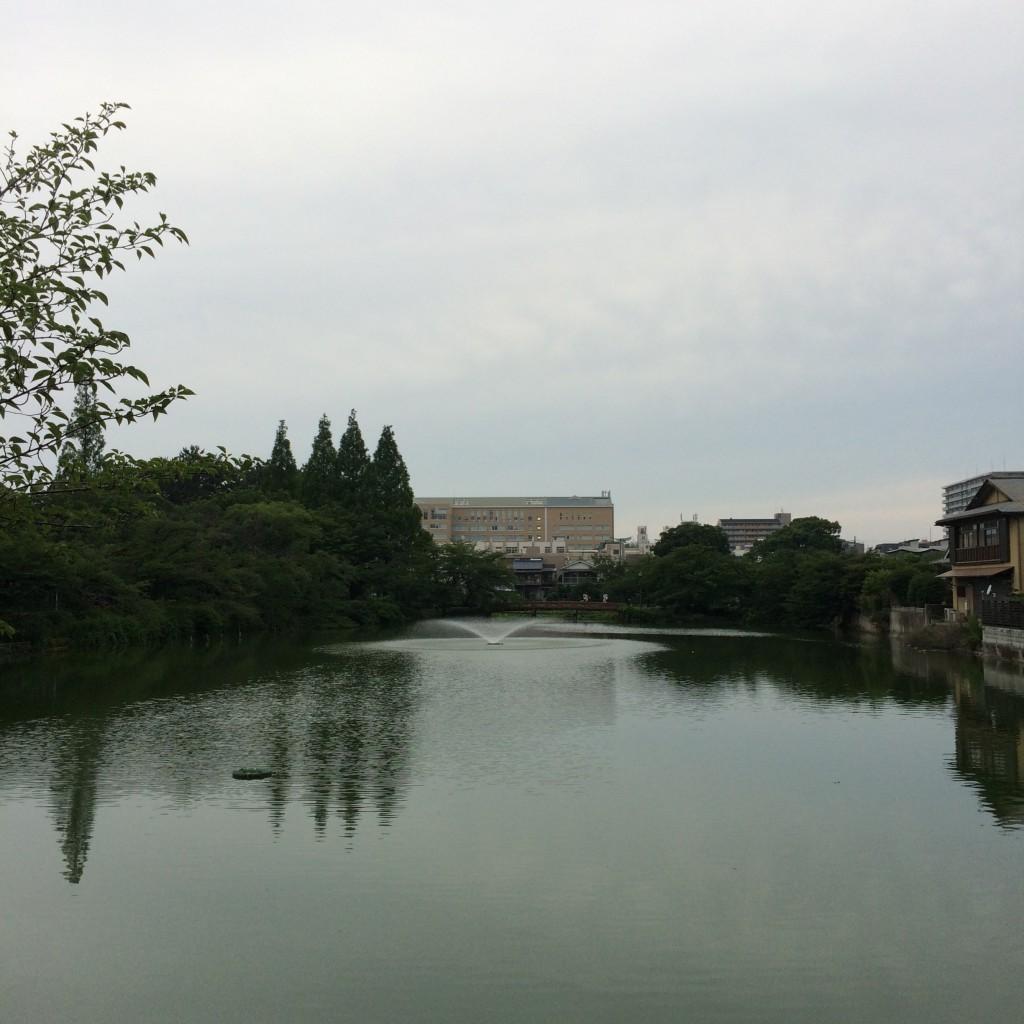 2015年7月2日(木)18時頃の桃が池