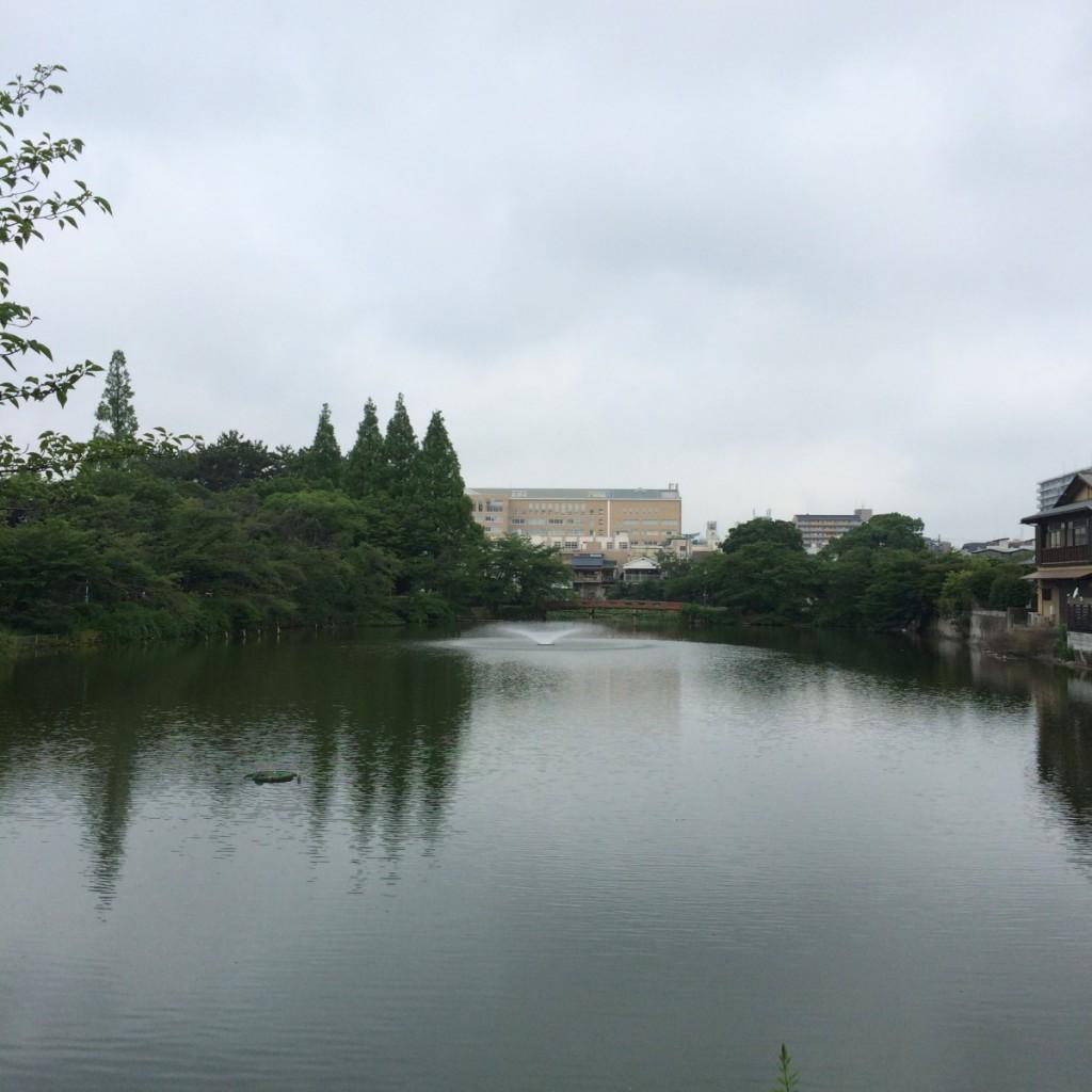 2015年6月15日(月)朝7時頃の桃が池