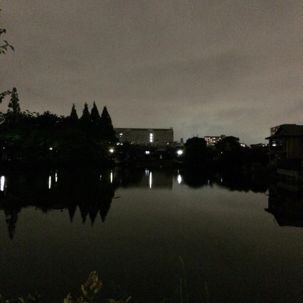 2015年6月17日(水)20時頃の桃が池