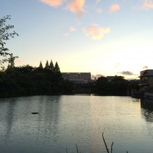 2015年6月28日(日)19時頃の桃が池