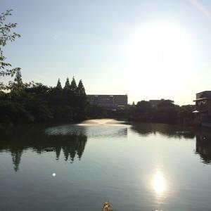 2015年6月29日(月)17時頃の桃が池