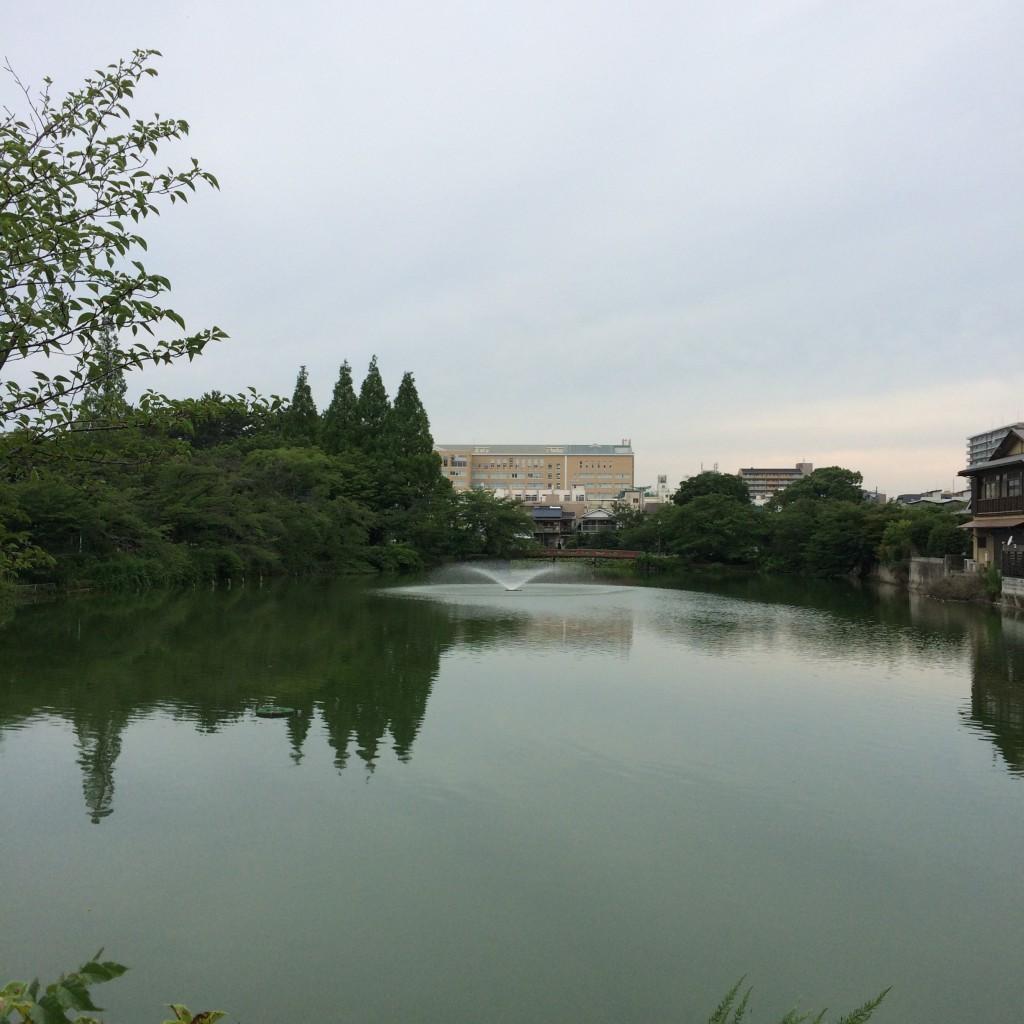 2015年7月3日(金)17時頃の桃が池