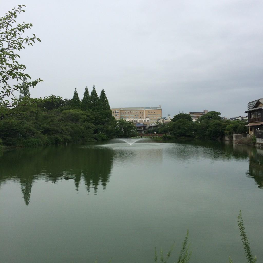 2015年7月4日(土)7時頃の桃が池