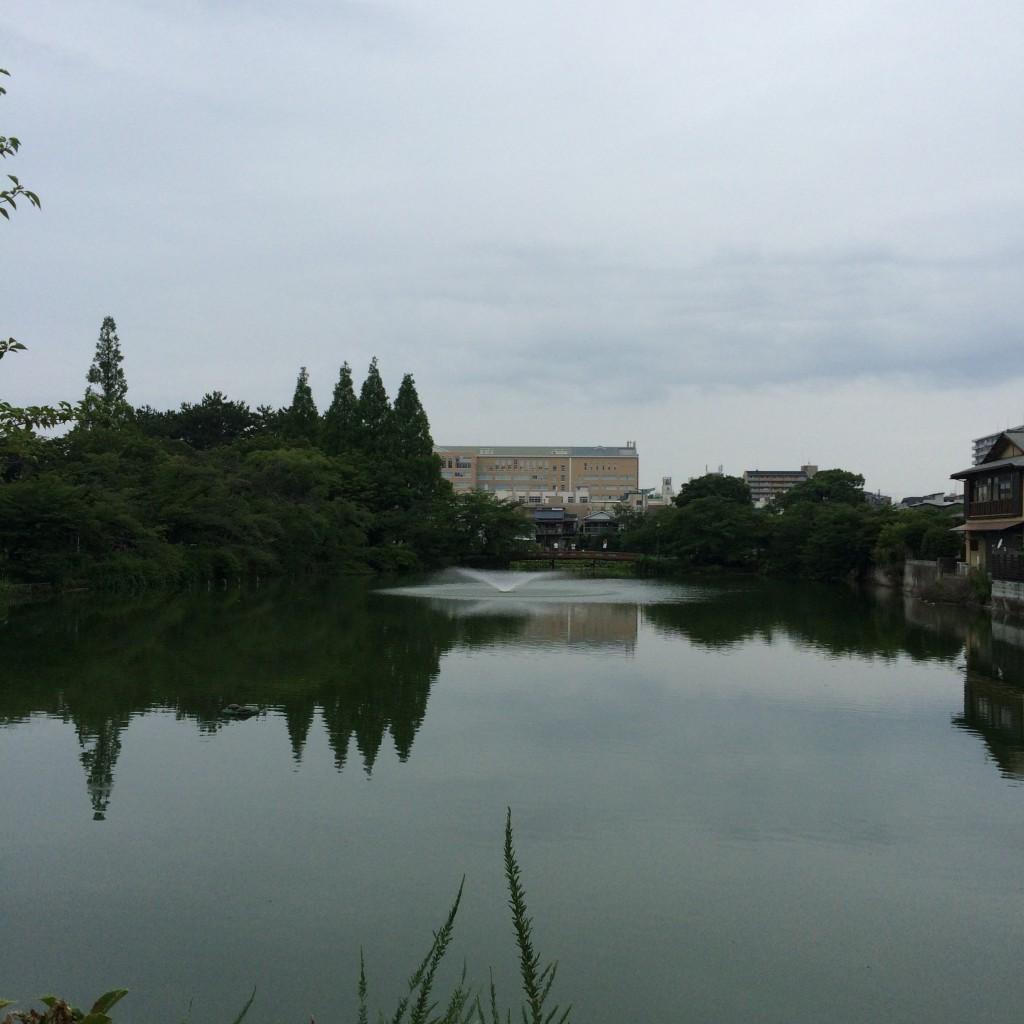 2015年7月5日(日)18時頃の桃が池
