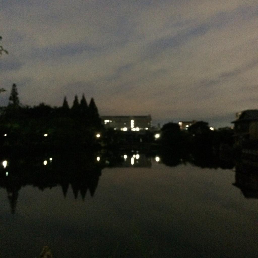 2015年7月7日(火)19時頃の桃が池