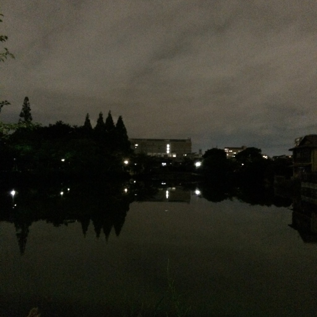 2015年7月8日(水)20時頃の桃が池