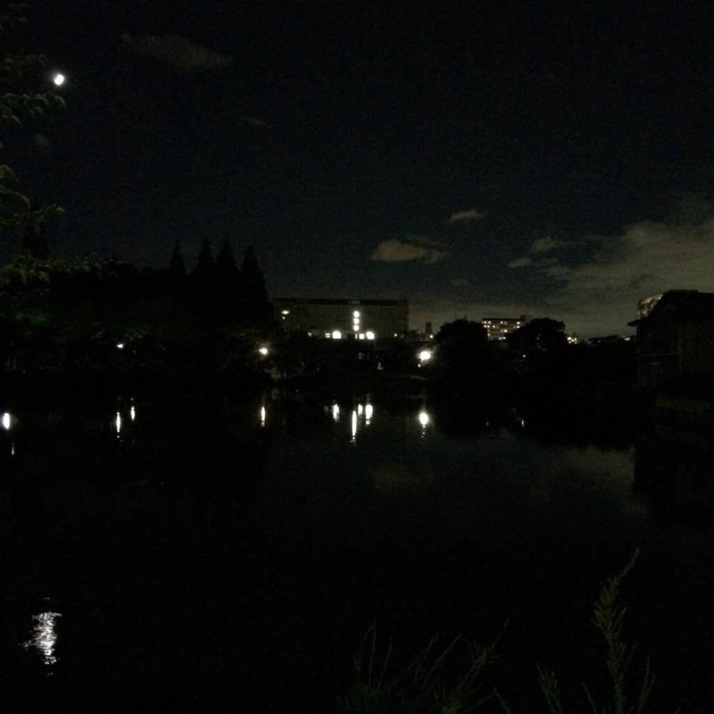 2015年7月21日(火)20時頃の桃が池