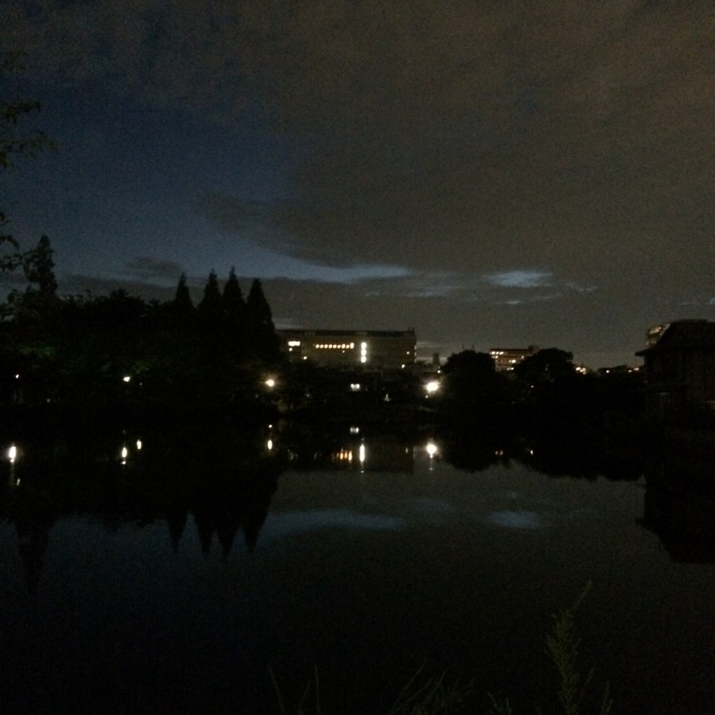 2015年7月23日(木)19時頃の桃が池
