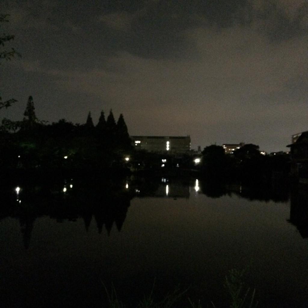 2015年7月28日(火)20時頃の桃が池