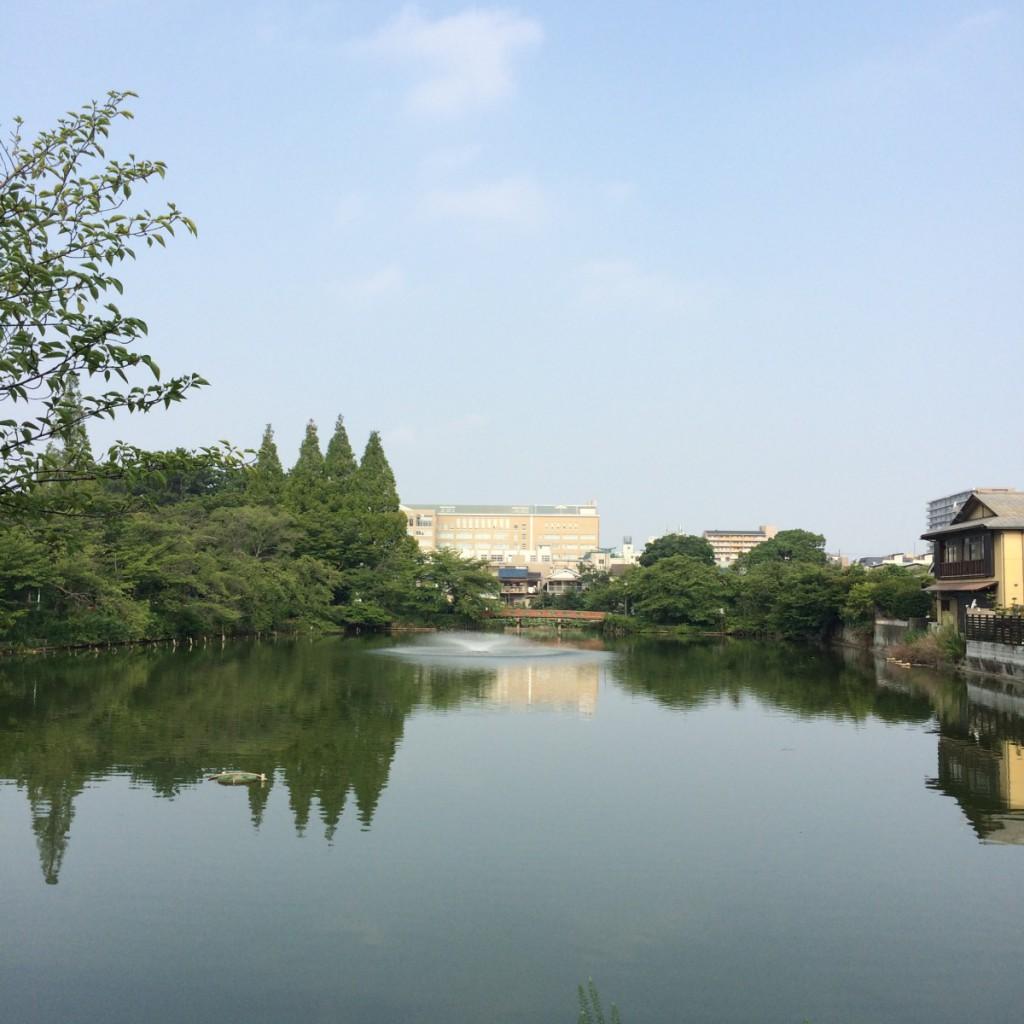 2015年8月3日(月)8時頃の桃が池