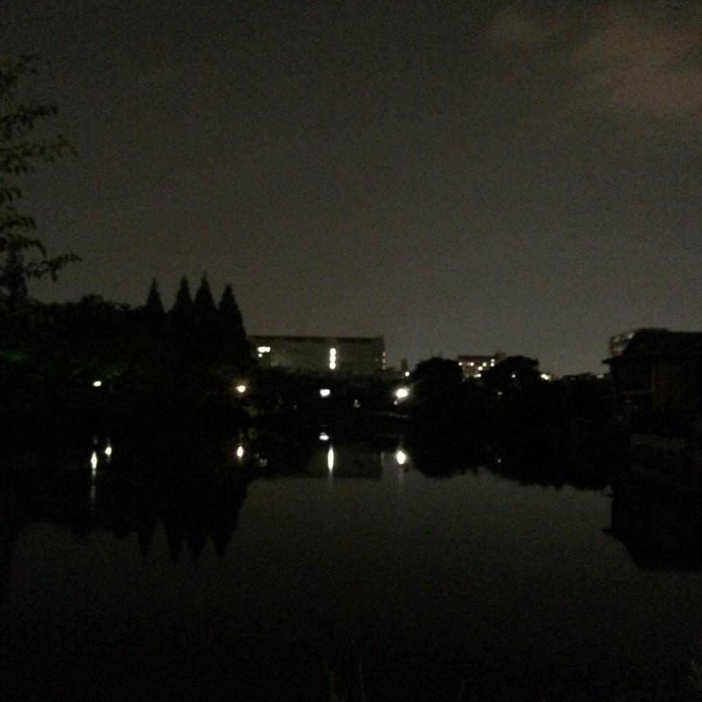 2015年8月11日(火)20時頃の桃が池