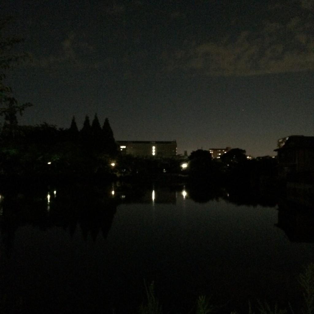 2015年8月15日(土)19時半頃の桃が池