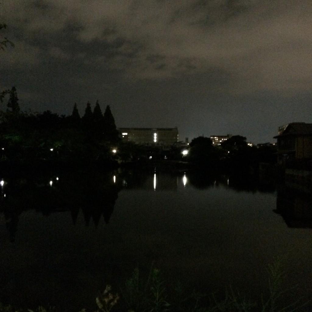 2015年8月18日(火)20時頃の桃が池