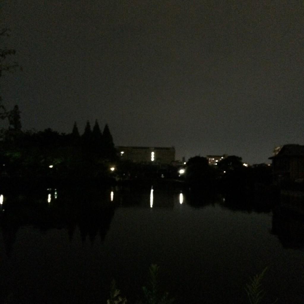 2015年8月24日(月)20時頃の桃が池
