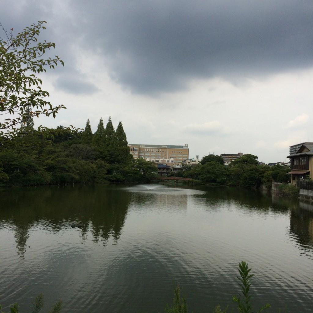 2015年8月29日(土)9時頃の桃が池