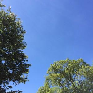 2015年9月3日(木)アイキャッチ画像
