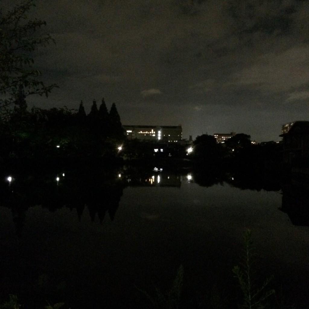 2015年9月1日(火)20時頃の桃が池
