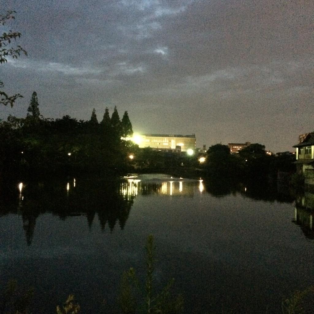 2015年9月2日(水)18時半頃の桃が池