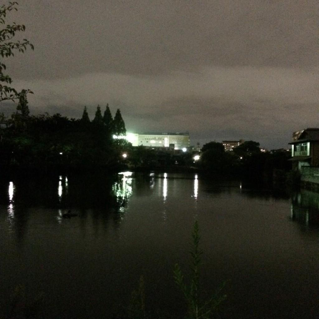 2015年9月7日(月)19時頃の桃が池