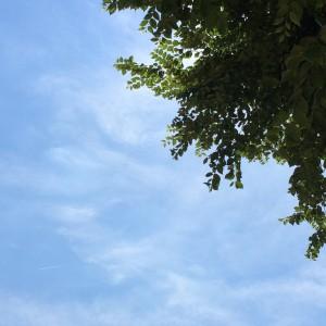 2015年9月14日(月)アイキャッチ画像