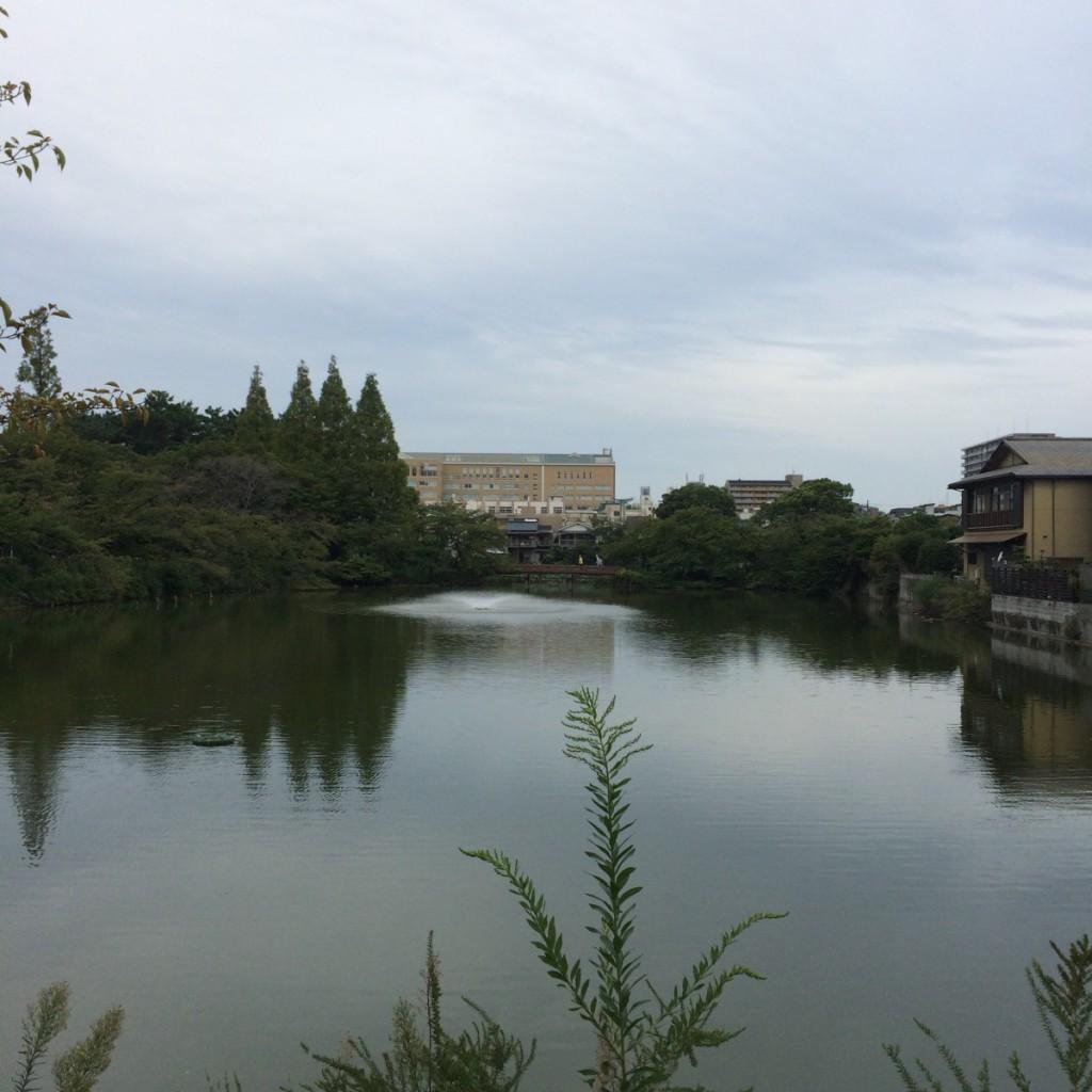 2015年9月16日(水)7時頃の桃が池