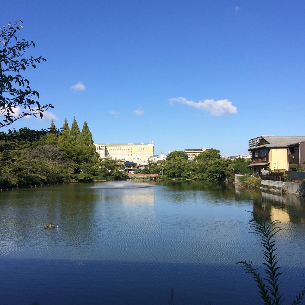 2015年9月20日(日)8時頃の桃が池