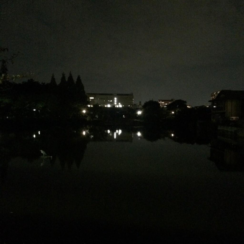 2015年9月30日(水)20時頃の桃が池