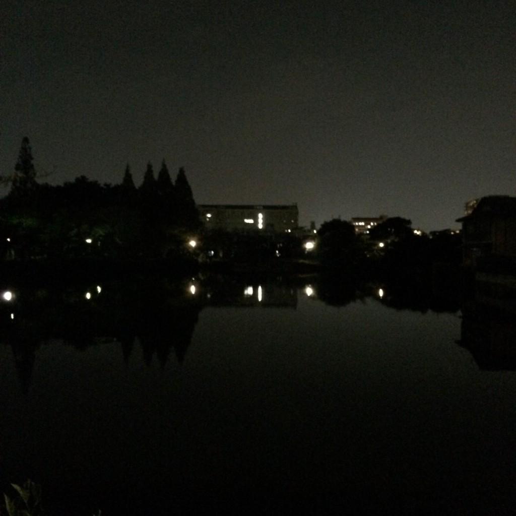 2015年10月8日(木)20時頃の桃が池