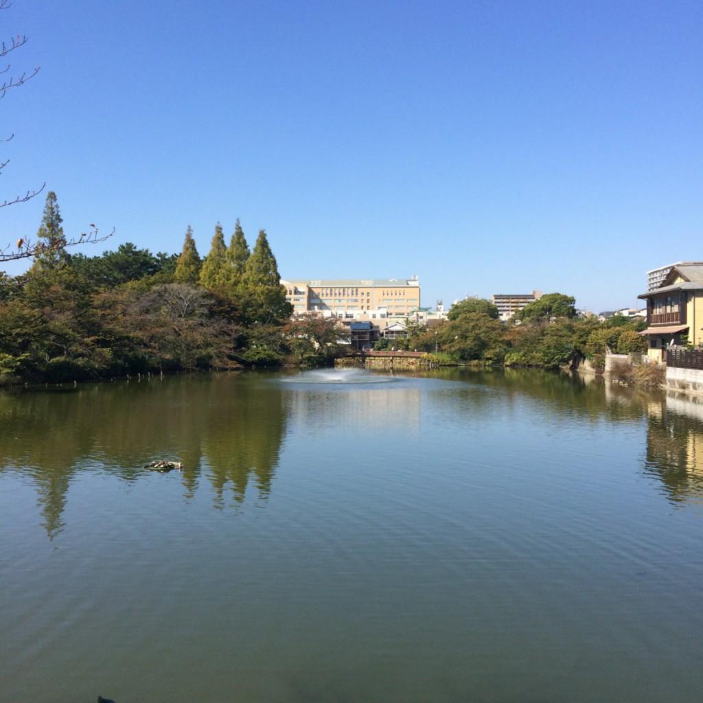 2015年10月18日(日)10時頃の桃が池