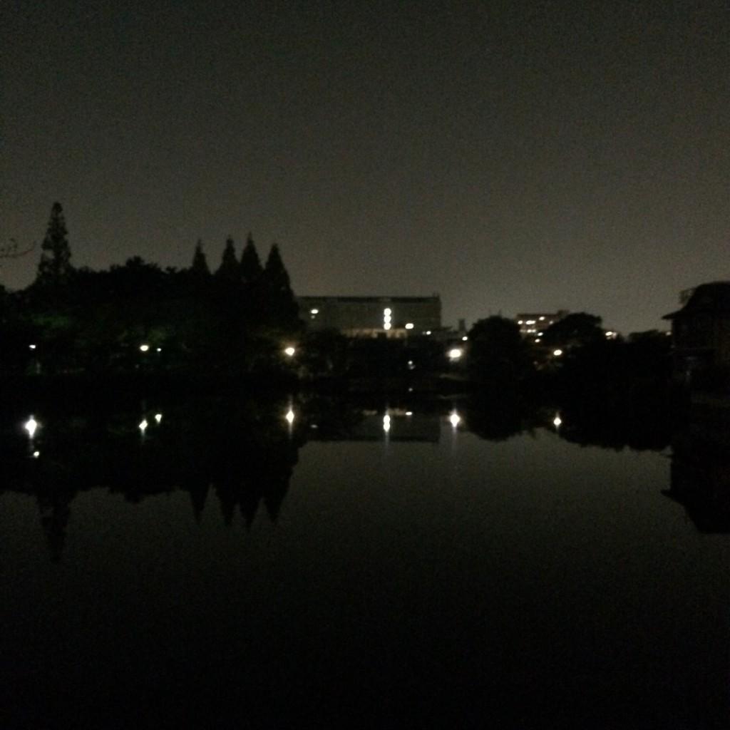 2015年10月21日(水)20時半頃の桃が池