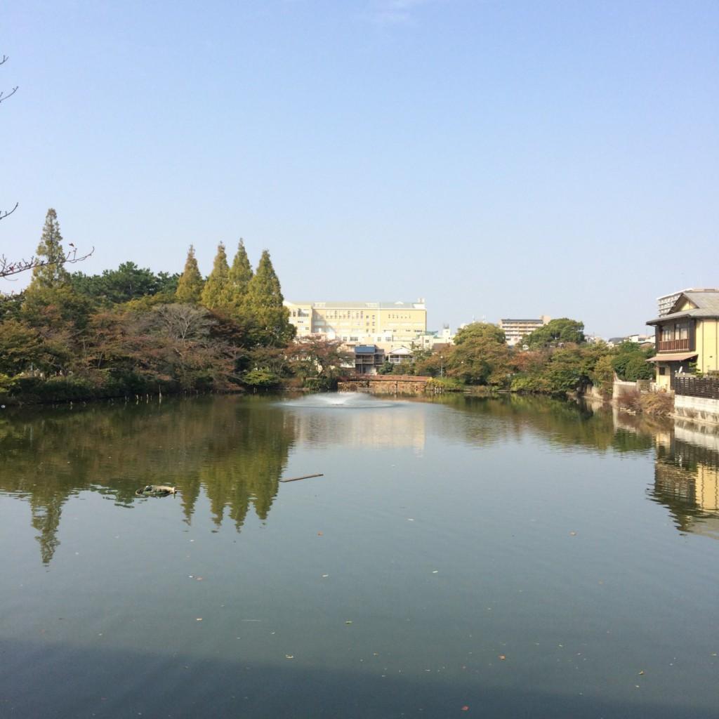 2015年10月24日(土)9時半頃の桃が池