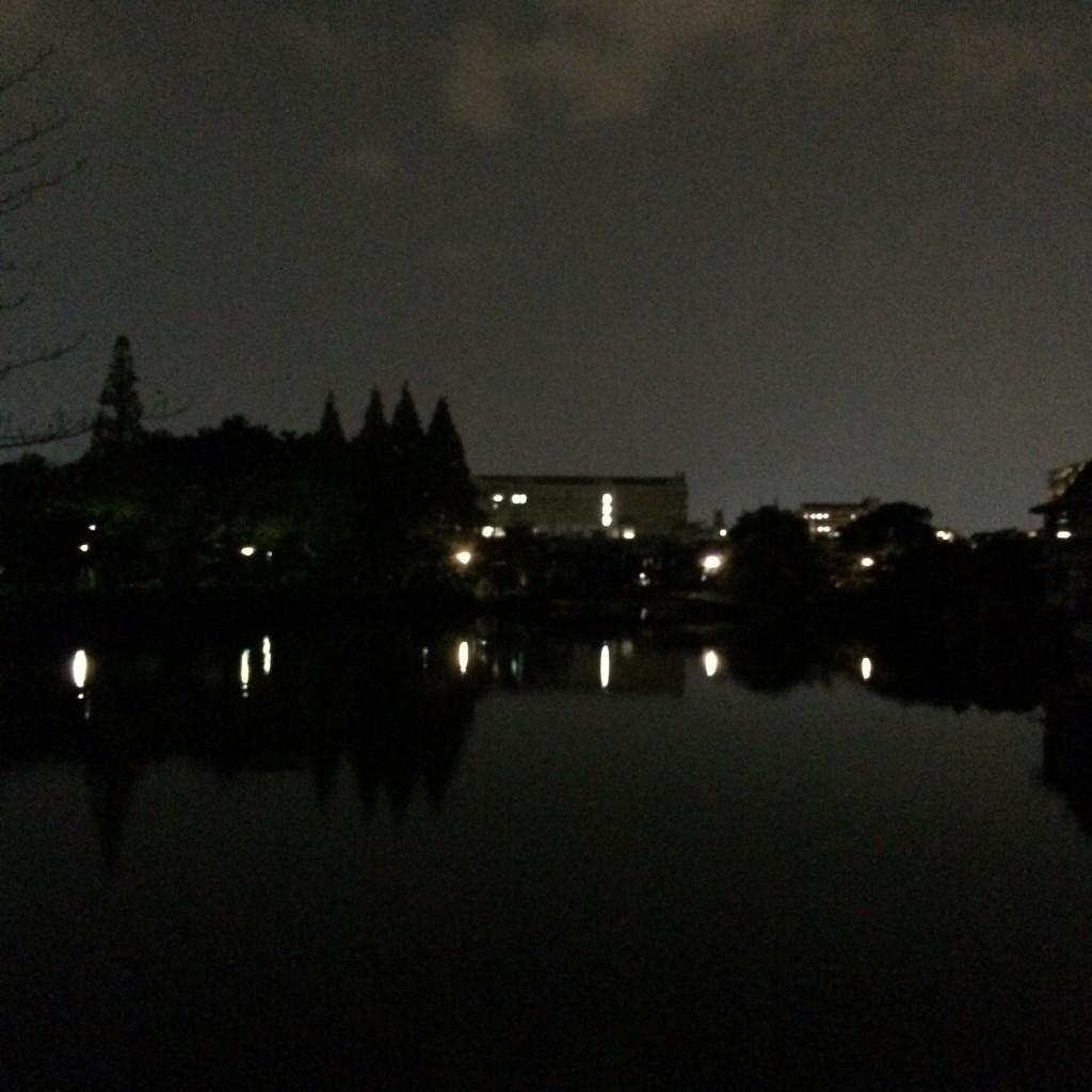 2015年10月30日(金)20時頃の桃が池