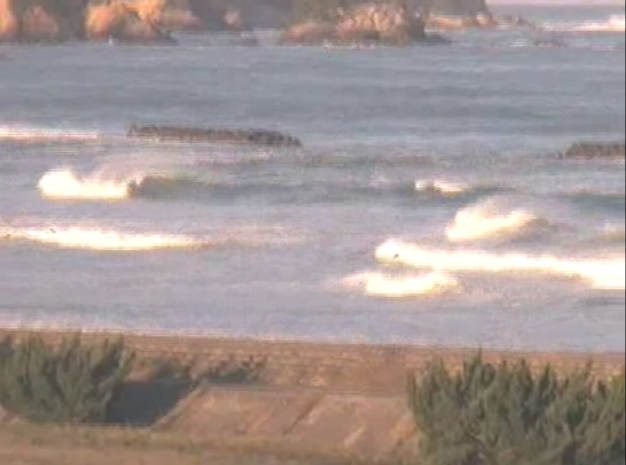 2015年10月7日(水)16時頃の伊勢国府の浜